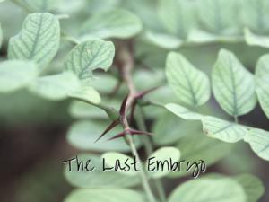 The Last Embryo   Denver Metro Moms Blog