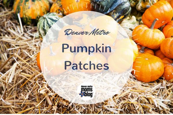 Denver Pumpkin Patches 2017   DMMB