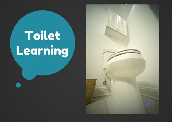 Must Haves for Toilet Training   Denver Metro Moms Blog