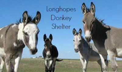 Longhopes