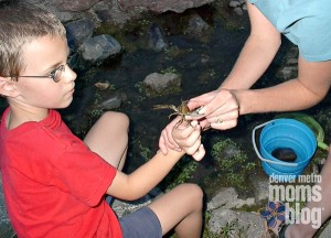A boy and his mom holding a crayfish up for a picture
