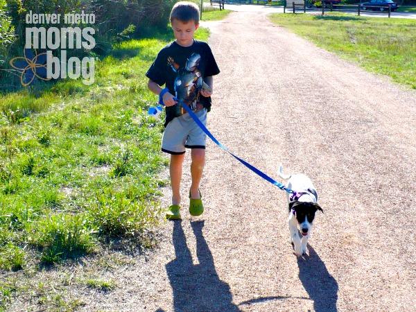 A boy walking his dog along a path