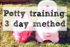 Potty Training: 3 Day Method | Denver Metro Moms Blog