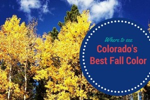 Where to See Colorado's Best Fall Color | Denver Metro Moms Blog