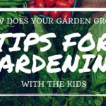 How Does Your Garden Grow: Tips for Gardening with Kids