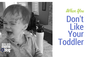 When You Don't Like Your Toddler | DMMB