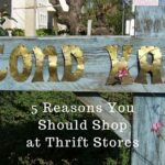 5 Reasons You Should Shop at Thrift Stores
