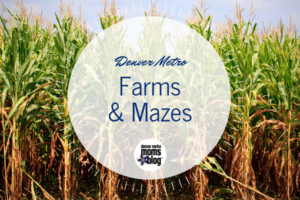 Guide to Farms and Mazes in Denver