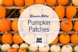 Denver Metro Moms Blog Guide to Pumpkin Patches