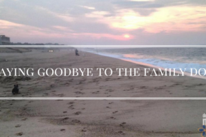 Saying Good- Bye to the