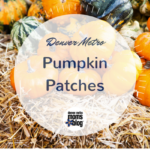2017 Guide to Denver Metro Pumpkin Patches