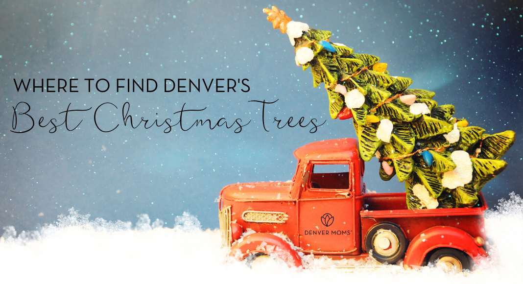 Where to Find the Best Christmas Trees Around Denver - Denver Moms